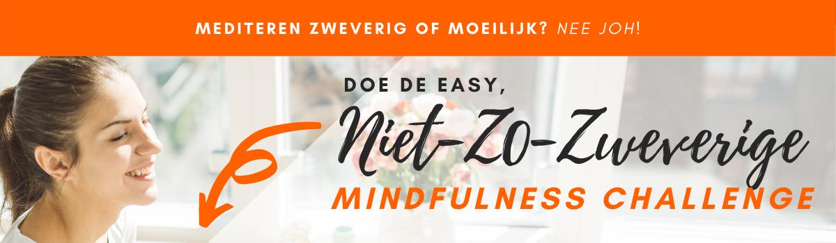 De Mindfulness Challenge Korte 5-Daagse Training